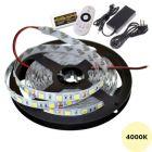 LED Strip 12V - Wit - 4000K - 4,8W/m - 300 SMD2835 - 5 meter - IP65 - Set   MP210102B QUALEDY®  401-500 Lm