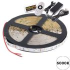 LED Strip 24V - Koelwit - 6000K - 14,4W/m - 300 SMD5050 - 5 meter - IP65 - Set | MP210110B QUALEDY®  > 500 Lm