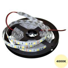 LED Strip 12V - Wit - 4000K - 14,4W/m - 300 SMD5050 - 5 meter - IP65 | MP210102 QUALEDY®  401-500 Lm