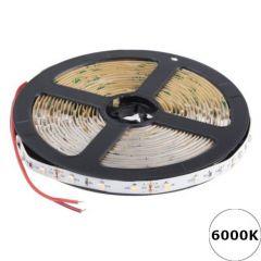 LED Strip 12V - Koelwit - 6000K - 4,8W/m - 300 SMD2835 - 5 meter - IP20 | MP210109 QUALEDY®  > 500 Lm