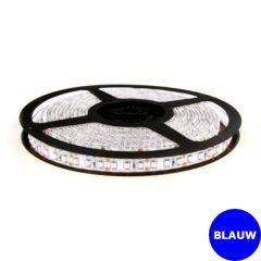 LED Strip 12V - Blauw - 9,6W/m - 600 SMD3528 - 5 meter - IP65 | MP210129 QUALEDY®